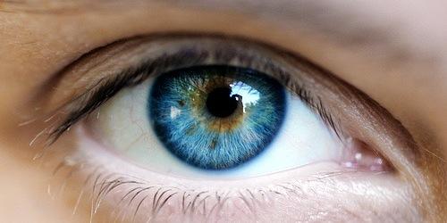 Et si vos yeux pouvaient parler…